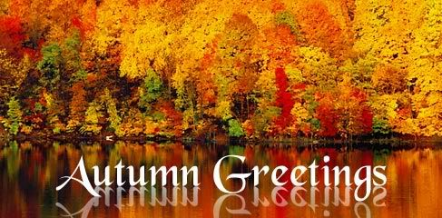 Cute St Patricks Wallpaper Autumn Greetings Pictures Photos And Images For Facebook