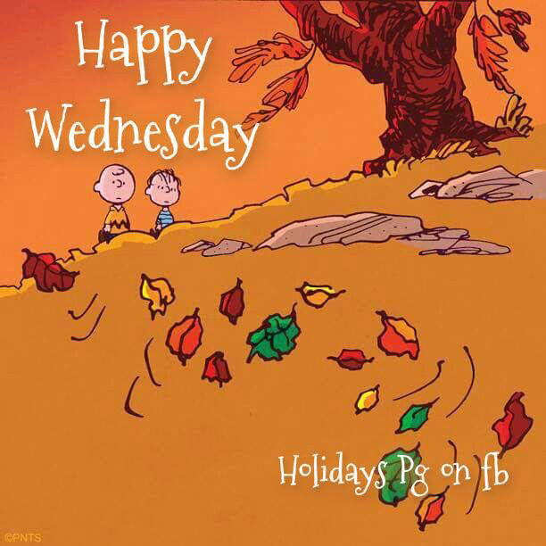 Charlie Brown Fall Wallpaper Charlie Brown Wednesday Quote Pictures Photos And Images