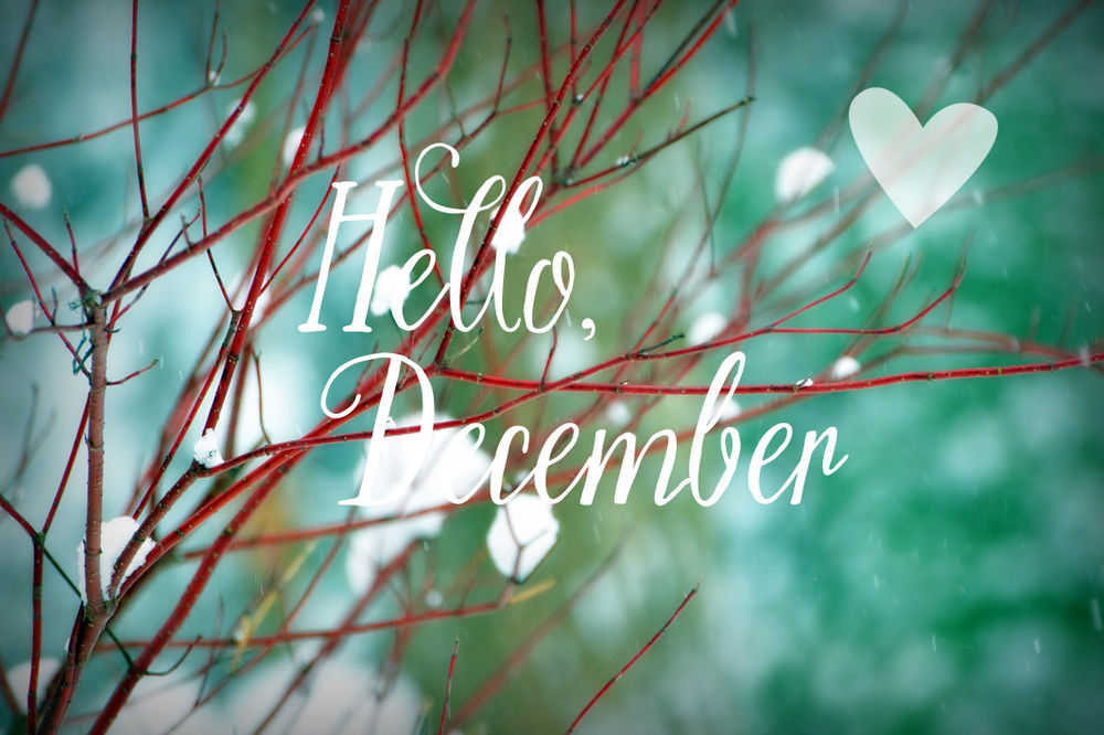 Cute Pinterest Quote Wallpapers Hello December Pictures Photos And Images For Facebook
