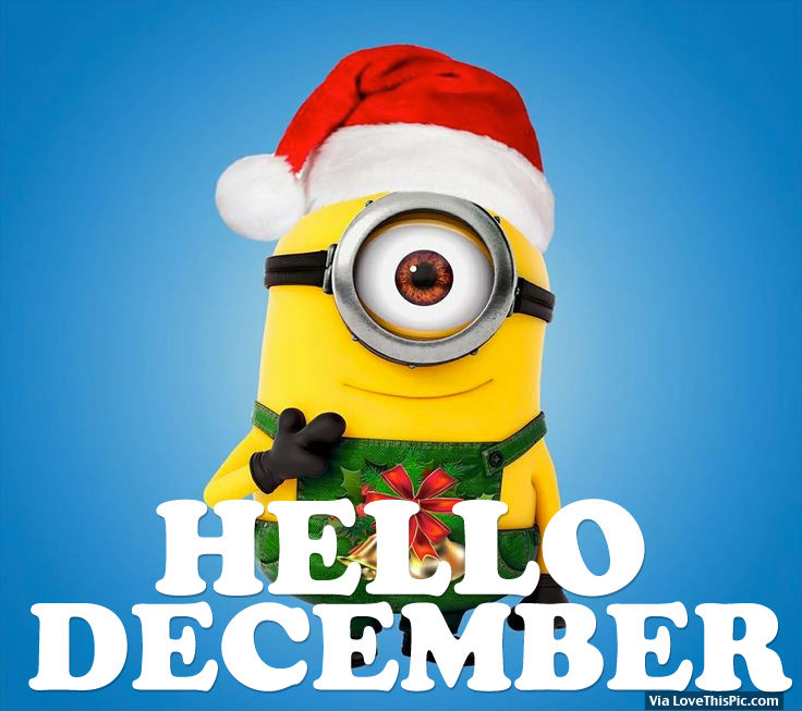 Cute Minions Wallpaper Quotes Hello December Pictures Photos And Images For Facebook