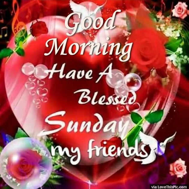 Gud Evening Wallpaper With Quotes Good Morning Have A Blessed Sunday My Friends Pictures