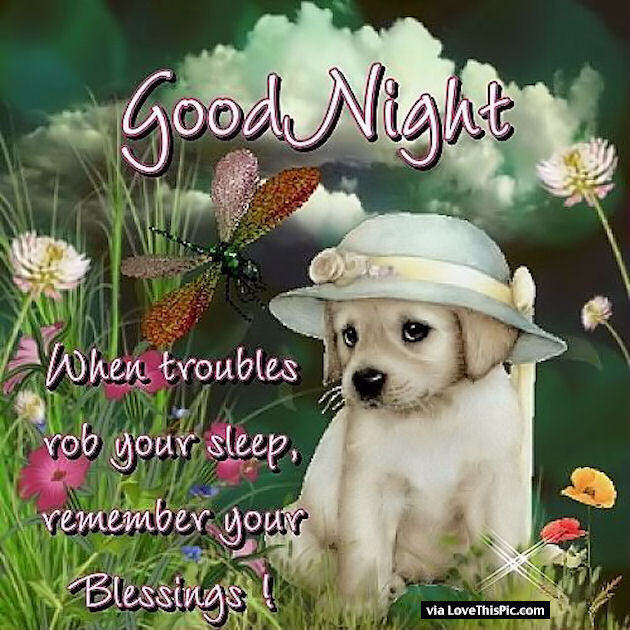 Cute Good Nite Wallpaper Goodnight Remember Your Blessings Pictures Photos And