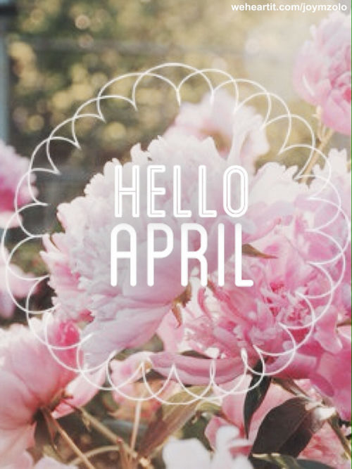 Cute Thanksgiving Wallpapers Free Hello April Pictures Photos And Images For Facebook