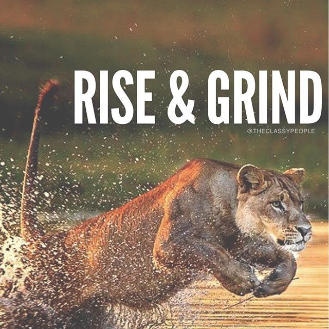 Good Morning Friends Wallpaper With Quotes Rise Amp Grind Pictures Photos And Images For Facebook