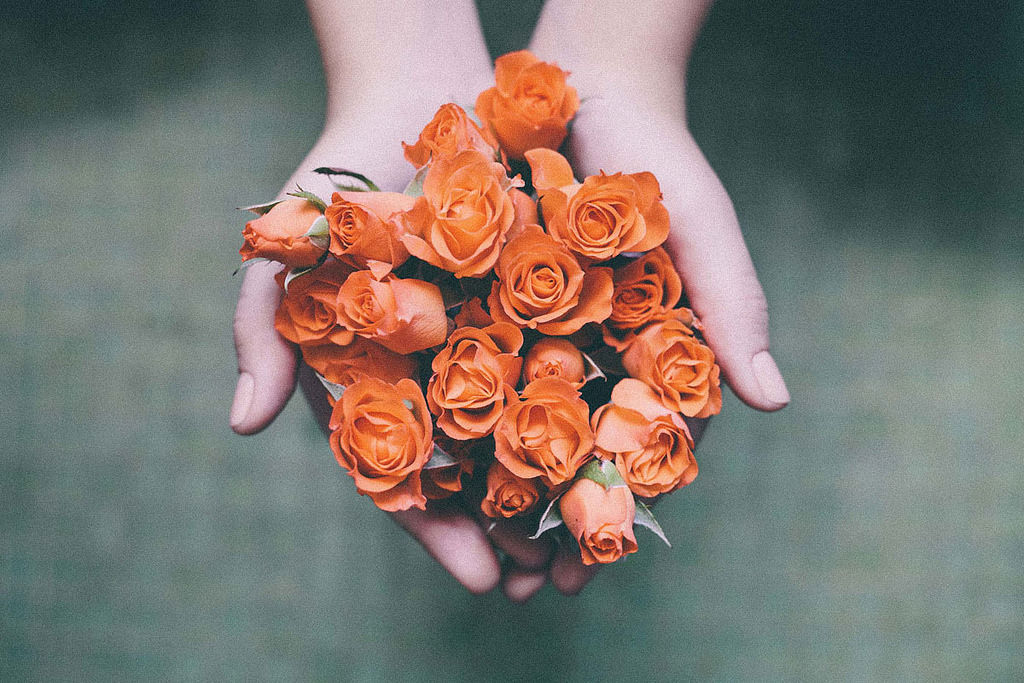 Good Morning Sunday Wallpaper With Quotes Orange Roses Pictures Photos And Images For Facebook