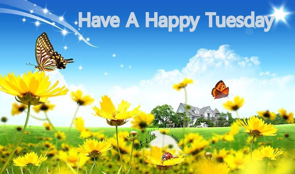 Good Quotes In The Story The Yellow Wallpaper Have A Happy Tuesday Spring Quote Pictures Photos And