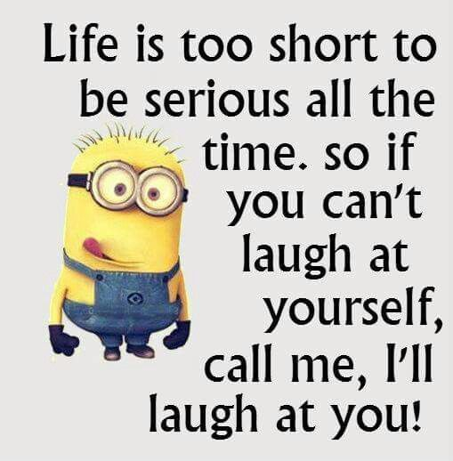 Cute Funny Wallpapers For Lazy Peopke Life Is Too Short To Be Serious All The Time Pictures