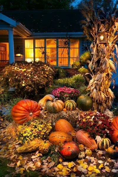 Fall Flowers And Pumpkins Wallpaper House Decorated For Fall Pictures Photos And Images For