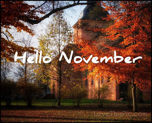 Cute Girly Wallpaper Quotes Hello November Pictures Photos And Images For Facebook