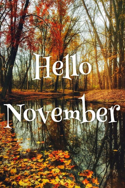 Nature Wallpaper With Life Quotes Hello November Pictures Photos And Images For Facebook