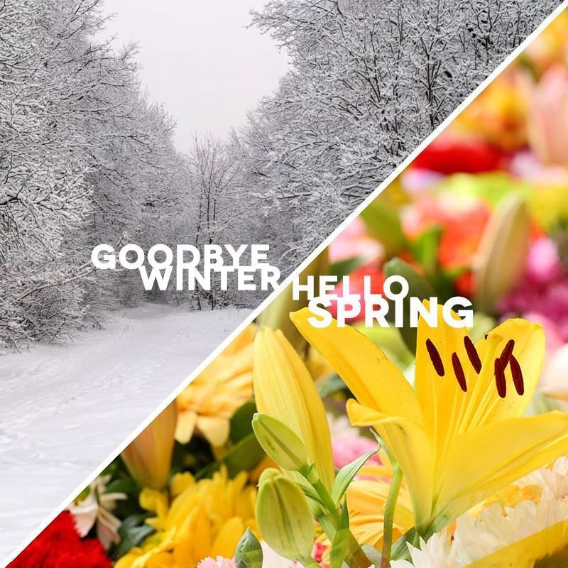 Happy Fathers Day Quotes Wallpaper Goodbye Winter Hello Spring Pictures Photos And Images