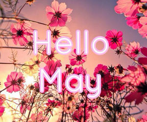 Cute Girly Life Wallpaper Hello May Pictures Photos And Images For Facebook