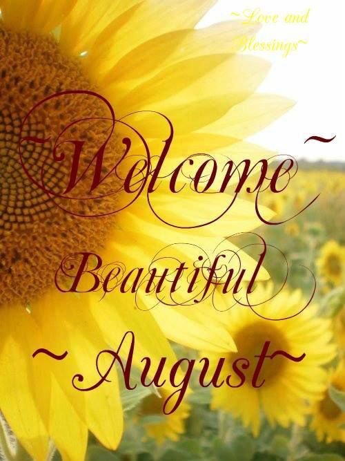 Fall Sunflowers Wallpaper Welcome Beautiful August Pictures Photos And Images For