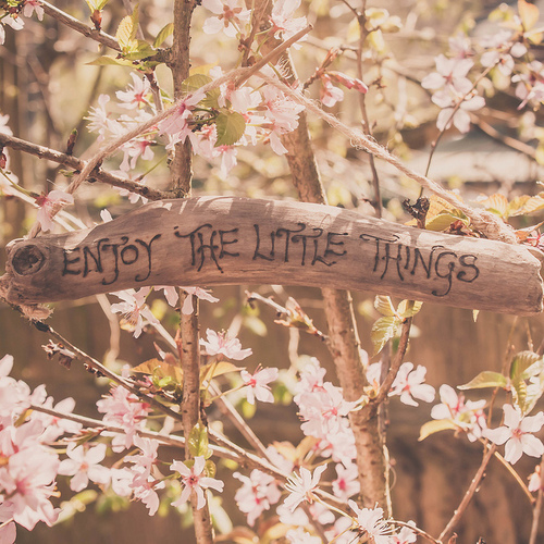 Good Quotes In The Story The Yellow Wallpaper Enjoy The Little Things Pictures Photos And Images For