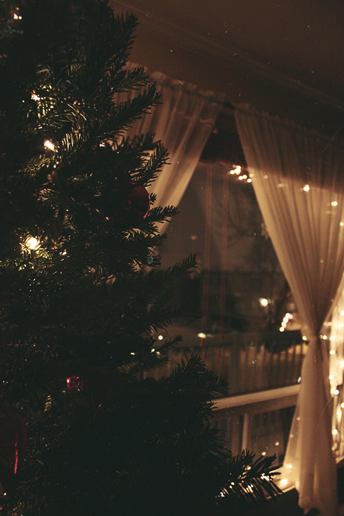 Fall In Love Wallpaper With Quotes Vintage Christmas Tree Pictures Photos And Images For