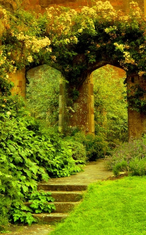 Good Morning Sunday Wallpaper With Quotes Natural Garden Pictures Photos And Images For Facebook
