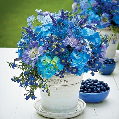 Good Quotes In The Story The Yellow Wallpaper Beautiful Blue Flowers Pictures Photos And Images For