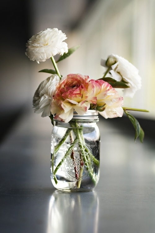 Peony Love Quote Wallpaper Mason Jar Flowers Pictures Photos And Images For
