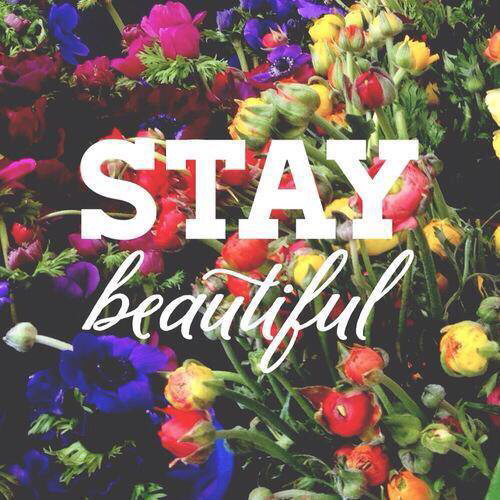 Cute Wallpapers To Say I Love You Stay Beautiful Pictures Photos And Images For Facebook