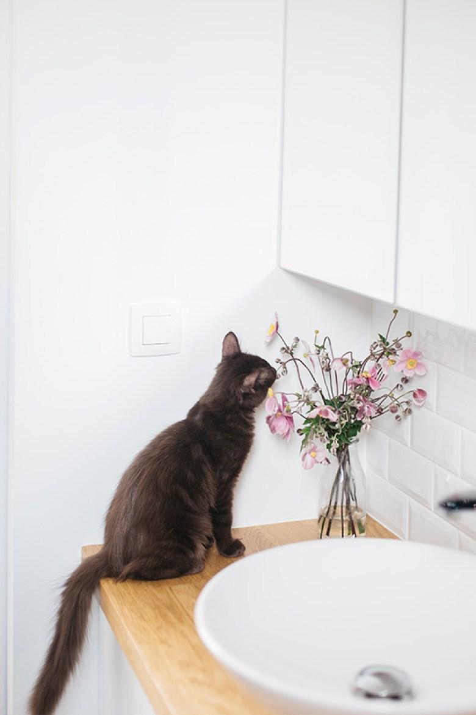 Love & Tralala_ home tour_ma salle de bains et mon chaton Cookie
