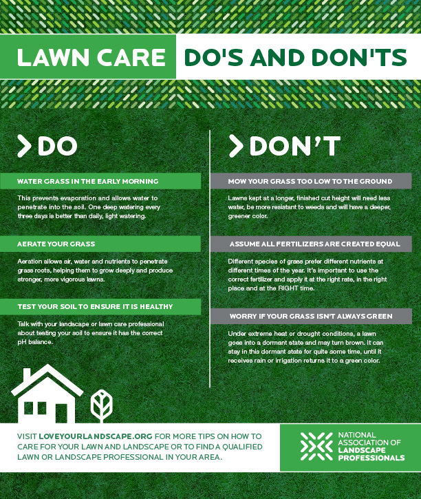 A Seasonal Guide Summer Lawn and Landscape Care