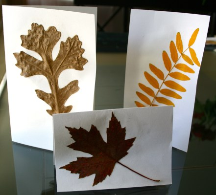 Fall Thanks.  Fall Leaf thank you cards