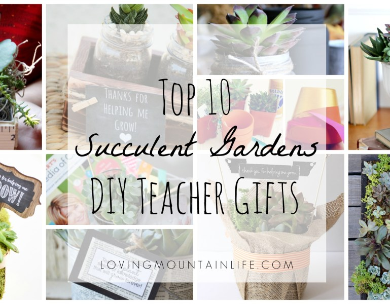 Top 10 DIY Succulent Gardens – Teacher Appreciation Gifts