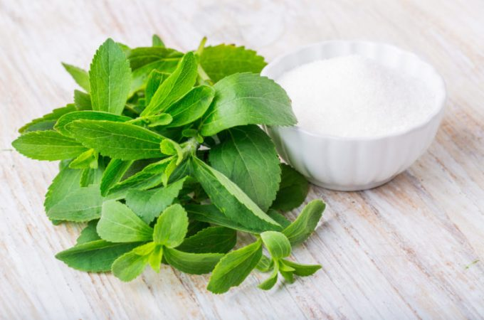Stevia plant and powdered stevia in a bowl