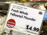 Avoid This Fish