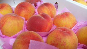 peach-415370_1920