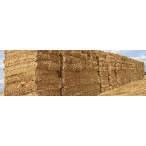 Medium Crop Of Straw Bales For Sale
