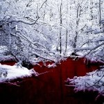 neve e rosso