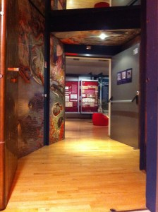 Nel ventre del Museo