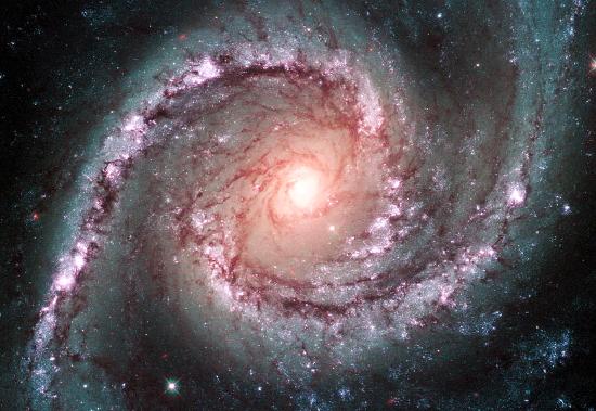 Galassia a 40 milioni di anni luce da noi, nella costellazione del Dorado