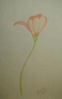 Pensive Flower