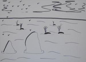 Whales at Ocean Beach