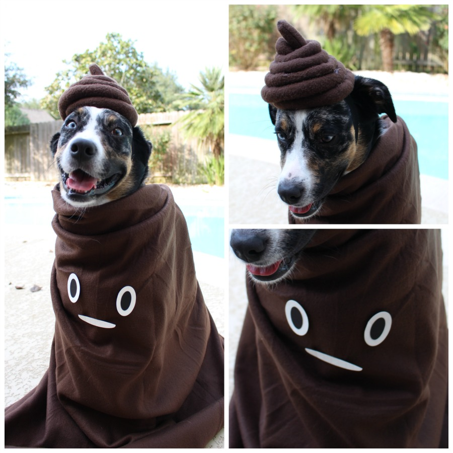 poomoji costume diy dogs