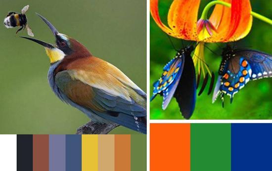 Purple And Black Bedroom Wallpaper 33 Orange Color Schemes Inspiring Ideas For Modern