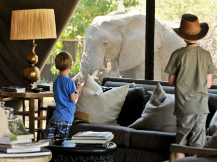 Machaba Camp - Luxury Safari Camp of Botswana