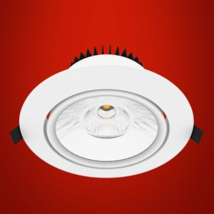 Adjustable cob downlight series