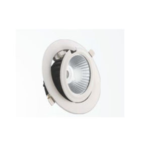 COB DOWNLIGHT SERIES 80310 R (WATTAGE:10 W)