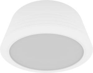 Surface Down Light Series 90510 R (WATTAGE:10 W)
