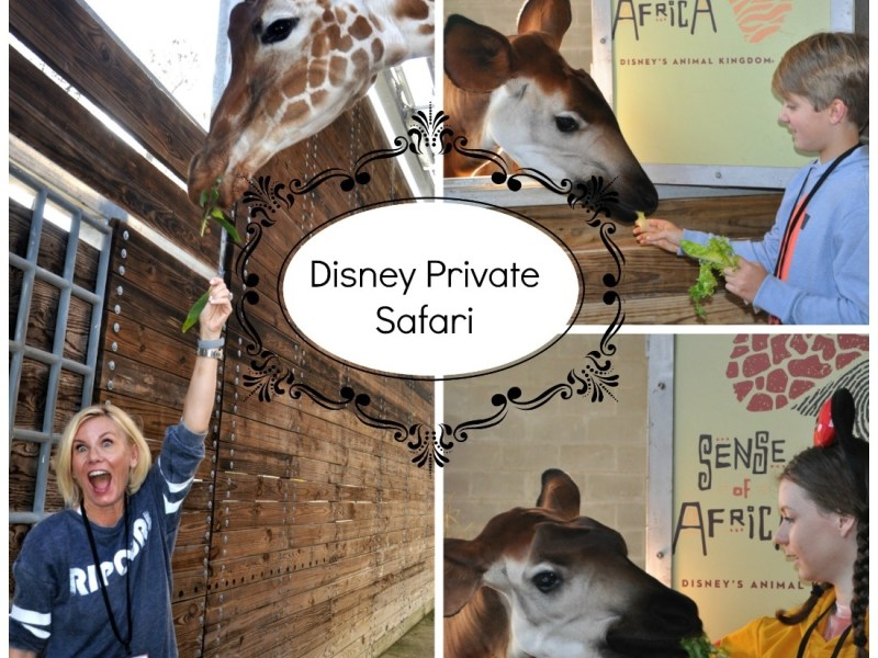 private safari
