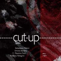 CutUp - Audio Recording - by Lycnos