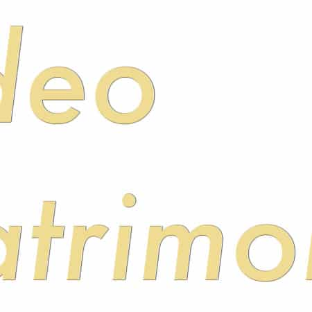 Video Matrimonio - Logo - by Lycnos