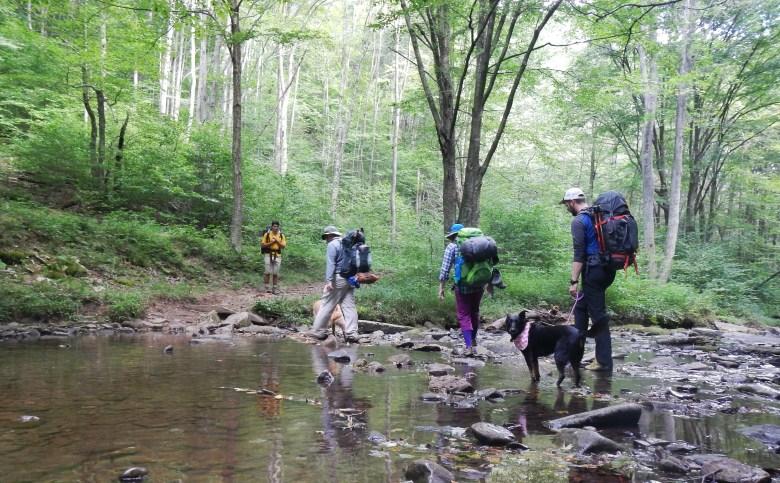 Backpacking in West Virginia #tepperlife