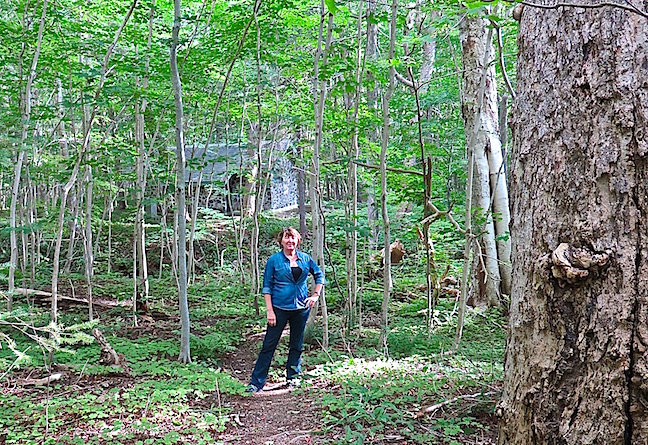 The Park is hiker's heaven. We walked the the boardwalk of the Bog in hopes of a moose encounter but settled for orchids insect eating plants. There were small falls on the Macintosh Brook trail and a replica of a 300-year old Scottish crofter's hut here on the Lone Shieling trail.