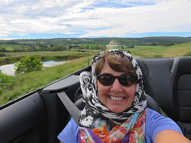 We put the Mustang's top down and managed to check out five of Nova Scotia's clustered vineyards.