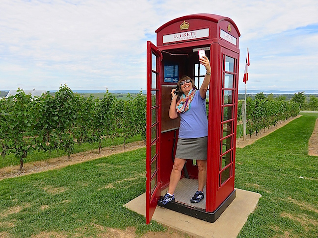 Luckett Vineyards was our first stop and favorite. The authentic British phone booth, smack dab in the middle of the vines, is finicky but when it works you call anywhere in the world for free.