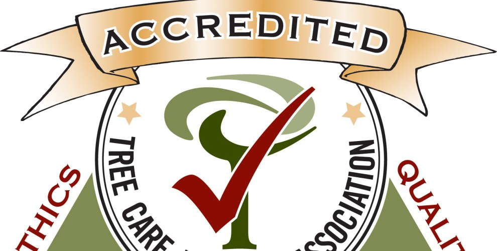 42643-Accreditation Logo color-TM